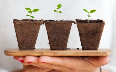 Top Five Ways to Grow Your Business